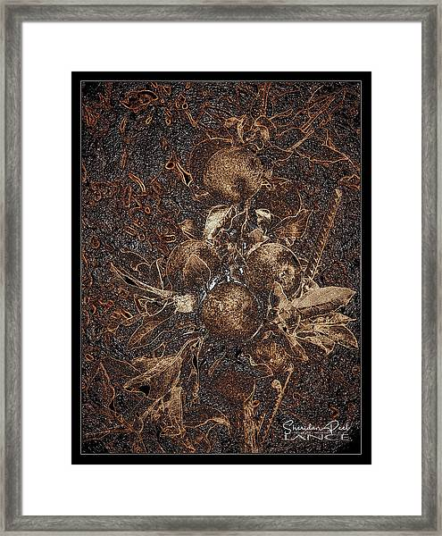 Carved Apples Framed Print