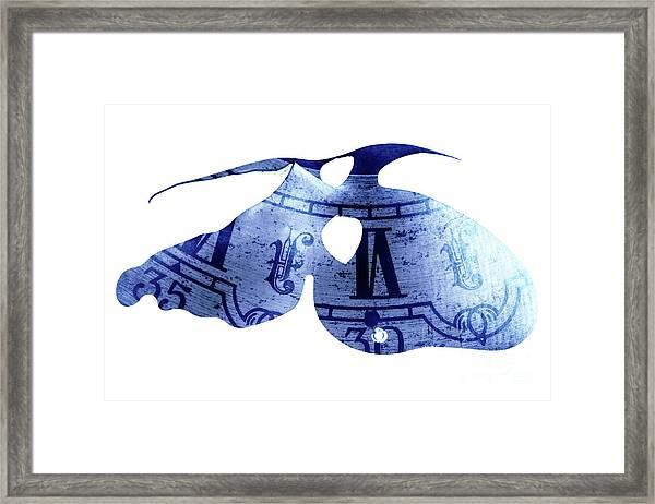 Carvi Veil  Framed Print