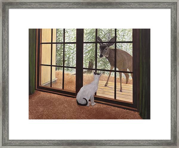 Cat Meets Deer Framed Print