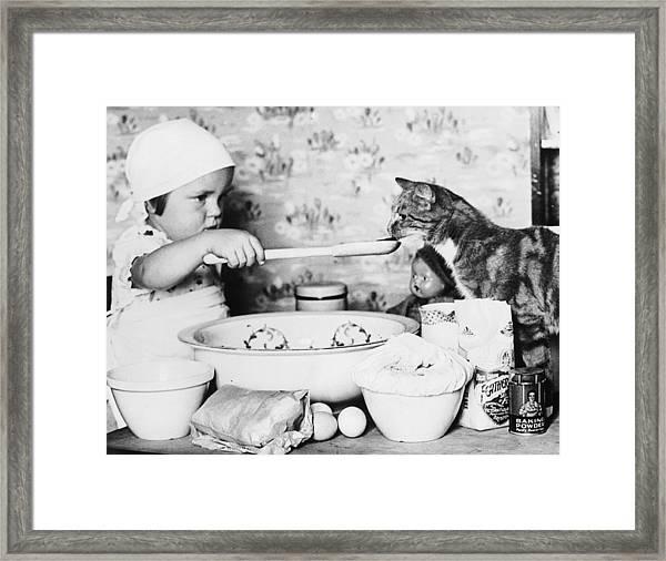Cat Taster Framed Print