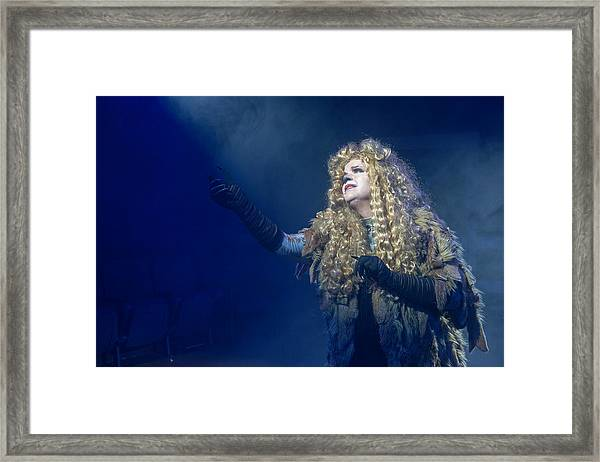 Cats Publicity Image  Framed Print