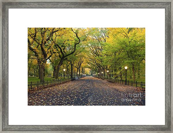 Central Park. Image Of  The Mall Area Framed Print