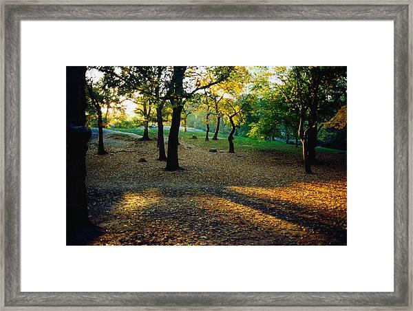 Central Park In The Autumn - New York Framed Print
