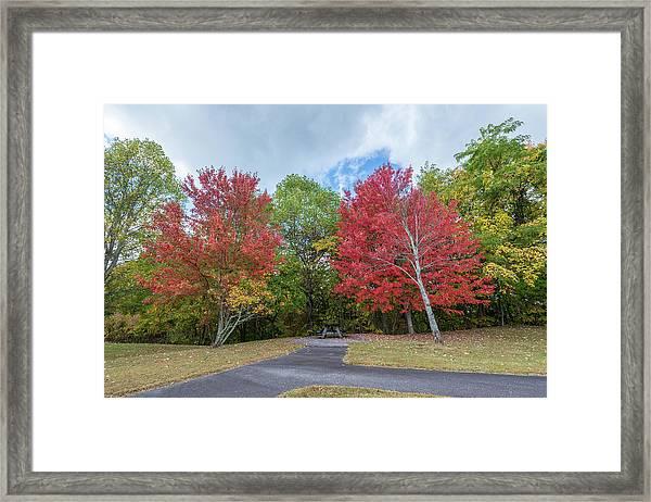Changing Of Color Framed Print