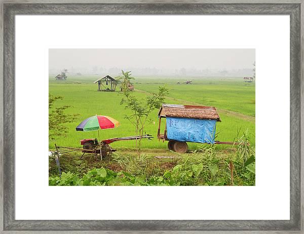 Chiangrai_rice Fields Framed Print
