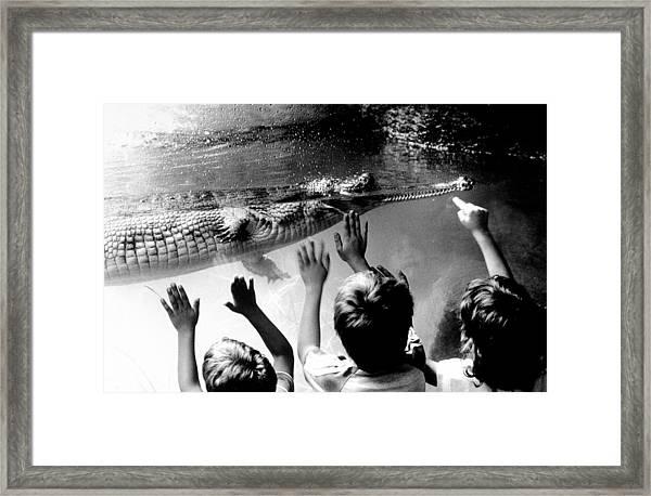 Children Reach Towards The Gharial Framed Print