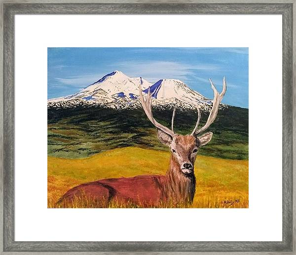 Framed Print featuring the painting Chillin' by Kevin Daly