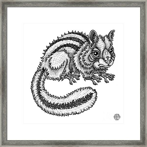 Framed Print featuring the drawing Chipmunk by Amy E Fraser