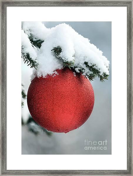 Christmas Tree, France Framed Print