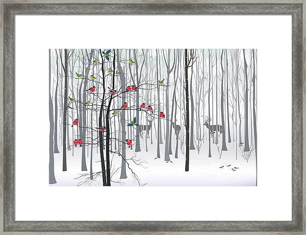 Christmas Tree In The Forest Framed Print