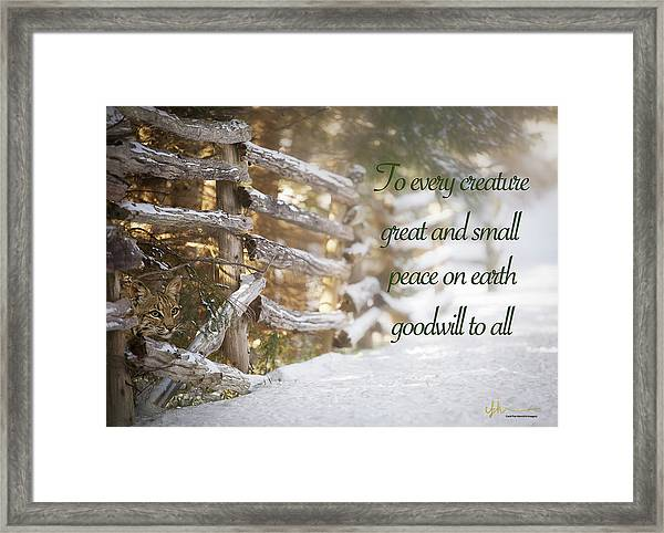 Christmas W/bobcat Framed Print