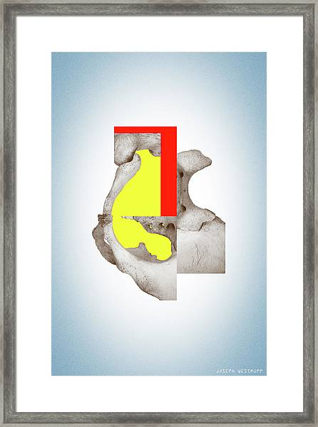 Cinerealism - Surreal Abstract Bone Collage And Geometry Framed Print