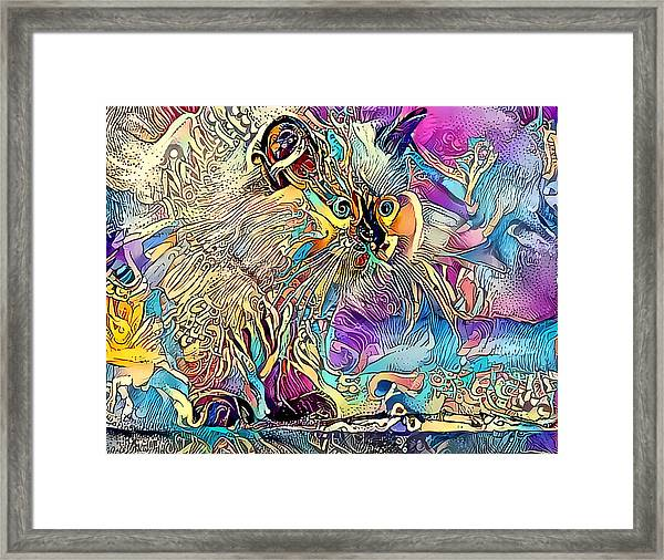 Circus Kitty Framed Print