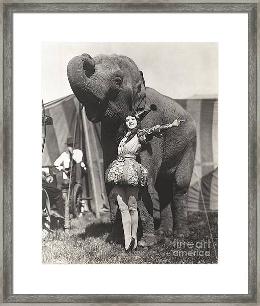 Circus Performer Posing With Elephant Framed Print