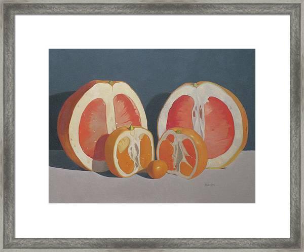 Citrus Family Framed Print