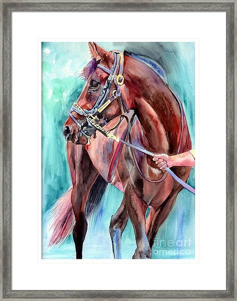 Classical Horse Portrait Framed Print
