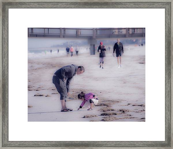 Clearwater Beachcombing Framed Print