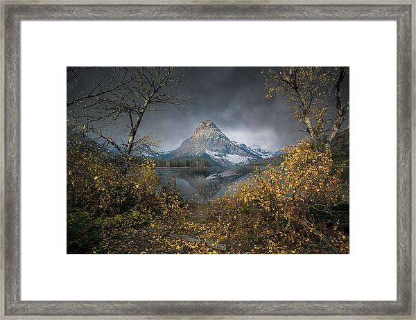 Clinging On / Late Fall / Two Medicine Lake, Glacier National Park  Framed Print