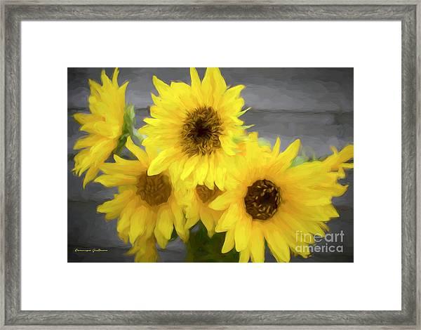 Cloud Of Sunflowers Framed Print