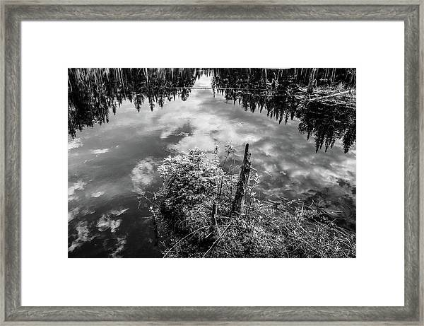 Clouds And Balsam Firs Framed Print