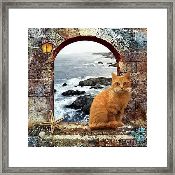 Coastal Guardian Framed Print