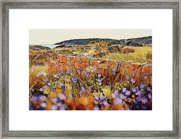 Coastal Pathway Throuigh The Dunes Framed Print