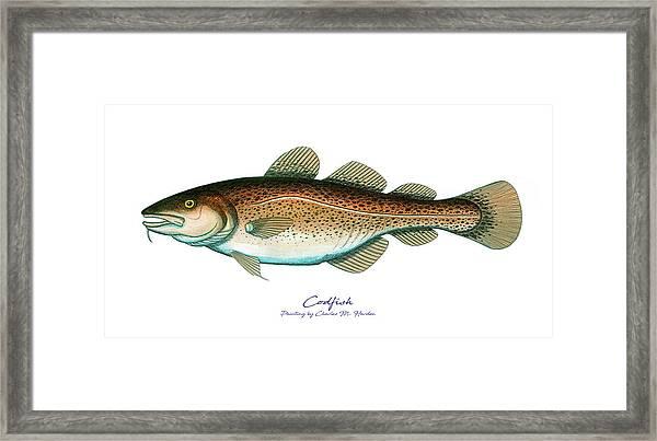 Codfish Framed Print
