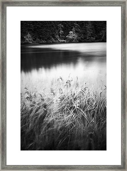 Framed Print featuring the photograph Coffenbury Lake by Whitney Goodey