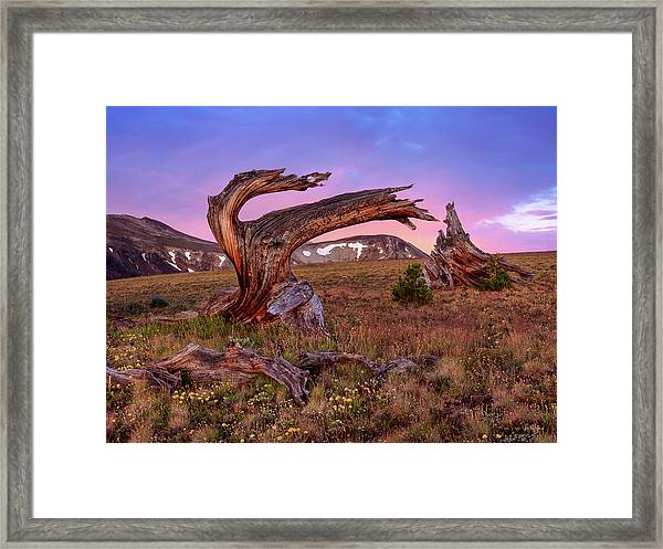Coloful High Mountain Splendor Framed Print by Leland D Howard