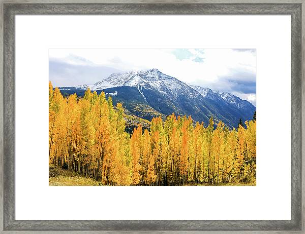 Framed Print featuring the photograph Colorado Aspens And Mountains 2 by Dawn Richards