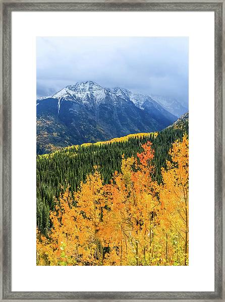Framed Print featuring the photograph Colorado Aspens And Mountains 4 by Dawn Richards