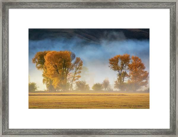 Framed Print featuring the photograph Colorado Autumn Fog by John De Bord