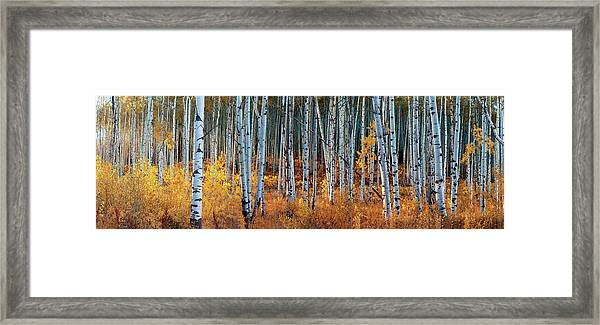 Colorado Autumn Wonder Panorama Framed Print