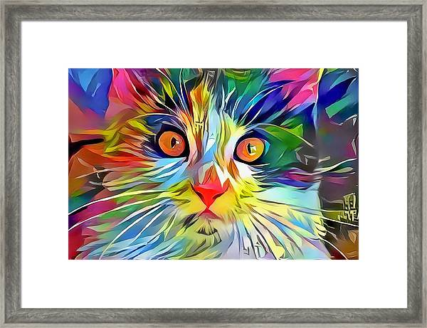 Colorful Calico Cat Framed Print