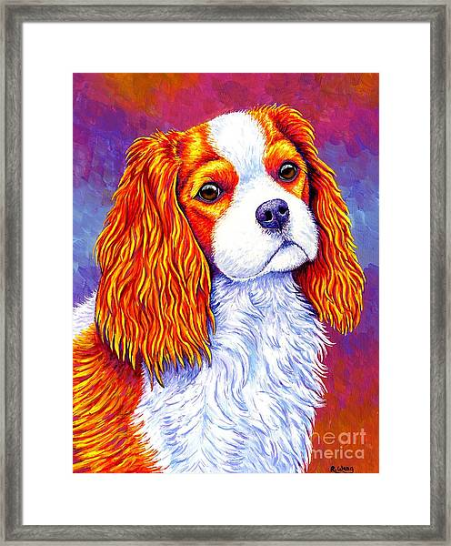 Colorful Cavalier King Charles Spaniel Dog Framed Print