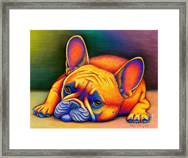 Colorful French Bulldog Framed Print