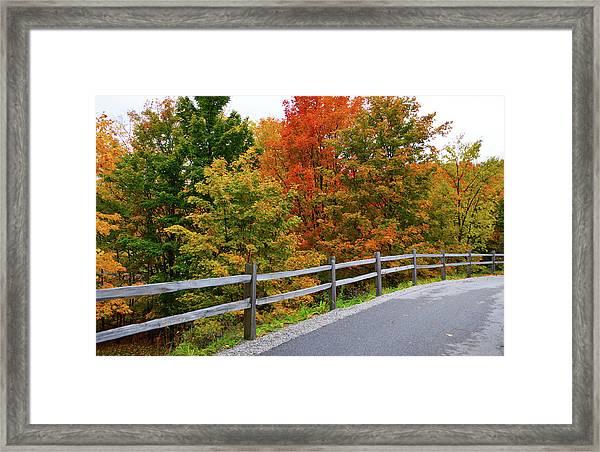 Colorful Lane Framed Print