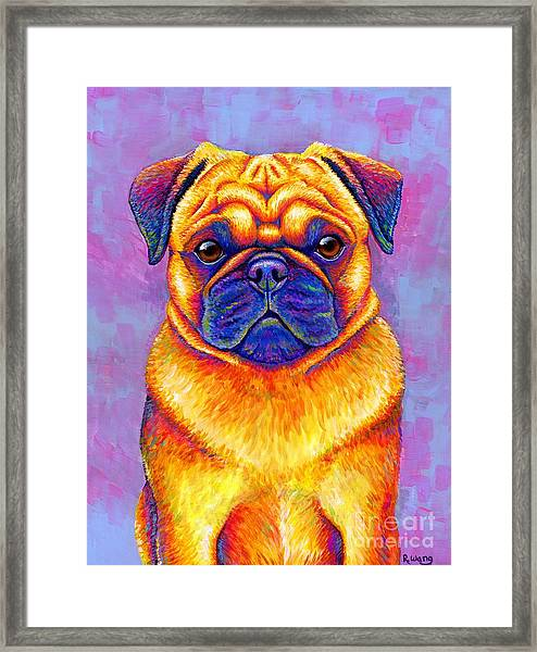 Colorful Rainbow Pug Dog Portrait Framed Print