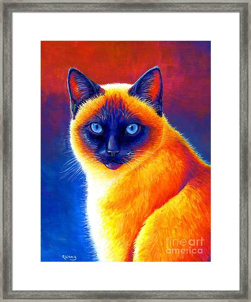 Colorful Siamese Cat Framed Print