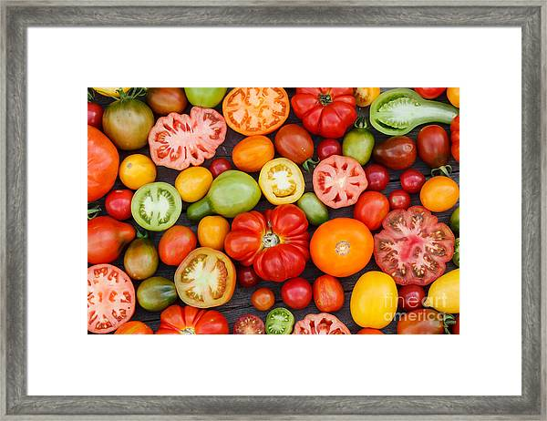 Colorful Tomatoes Framed Print