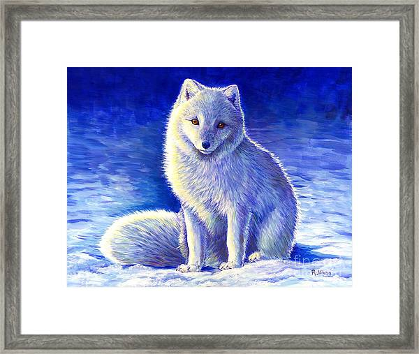 Colorful Winter Arctic Fox Framed Print