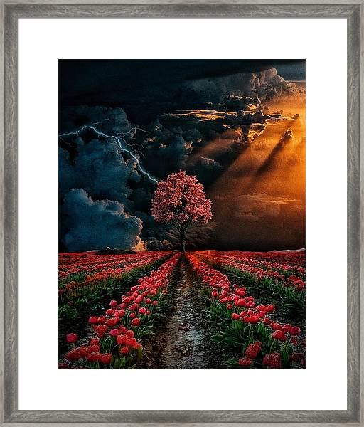 Colours Of The Sky Framed Print
