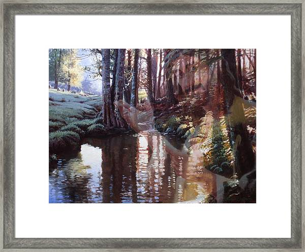 Come, Explore With Me Framed Print