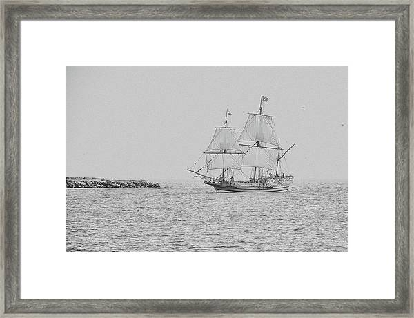 Coming Home Framed Print