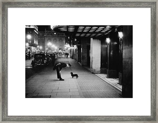 Commissionaires Dog Framed Print