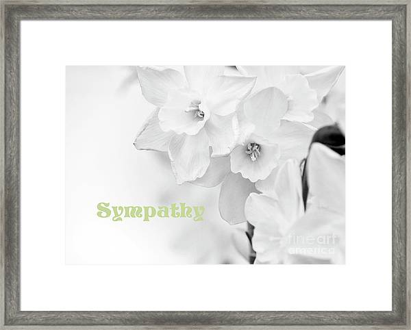 Condolences With Sympathy Framed Print by Charline Xia