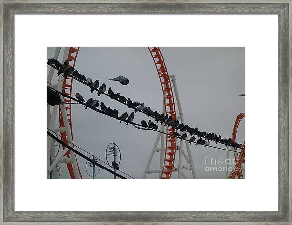 Coney Island New York City Framed Print