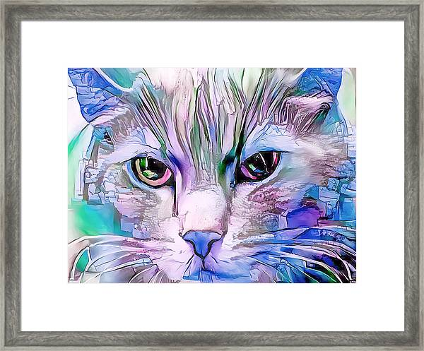Cool Blue Cat Framed Print