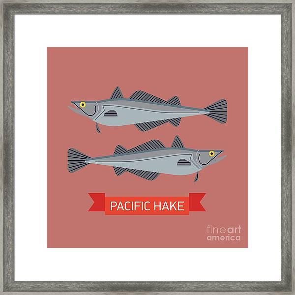Cool Vector Pacific Hake Fish Framed Print