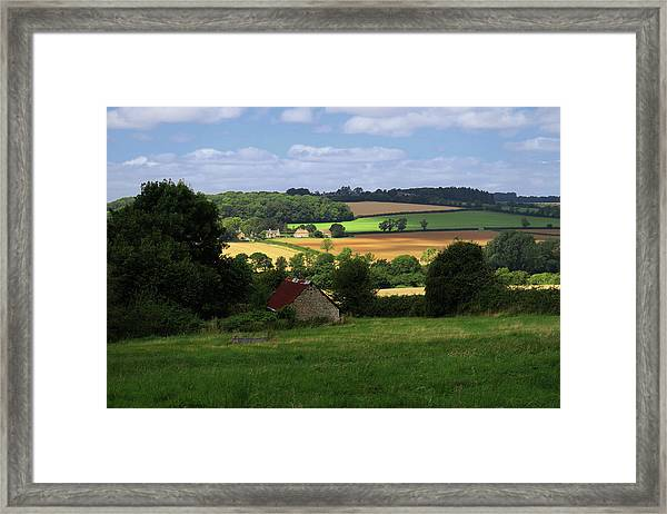 Cotswold Field England 81601 Framed Print